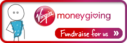 261x88 fundraise