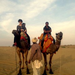 India riding camels