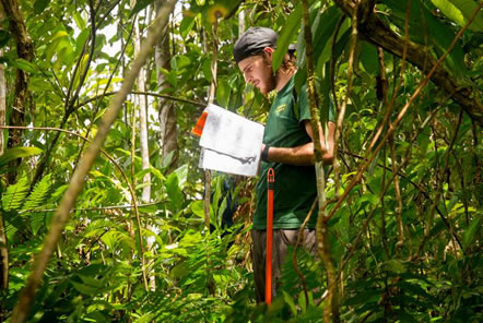 What can I read before joining the Amazon Conservation project in Peru?