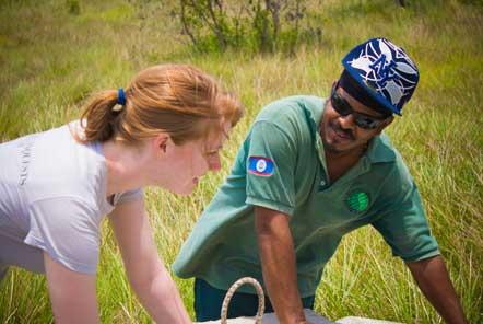Volunteers work with local rangers