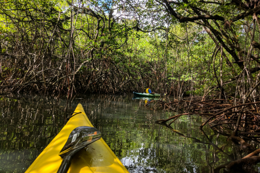 Helping to protect the Caribbean – My visit to Belize
