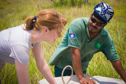 What Will You Do At The Caribbean Conservation Project?