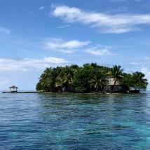Turtles, lionfish & island life in Belize: Volunteer diary