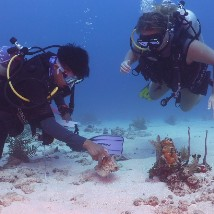 Lionfish, lobsters & learning: Belize Conservation Achievements