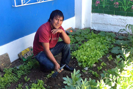 Graduate helping on the vegetable garden