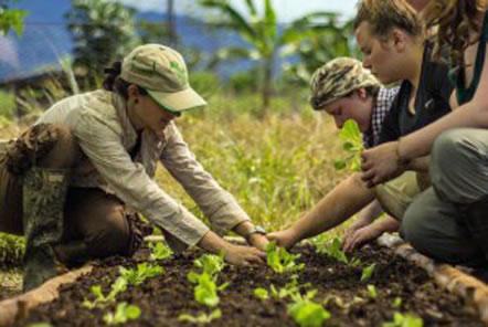 Pod Charity Grant: Bio-gardens in the Amazon