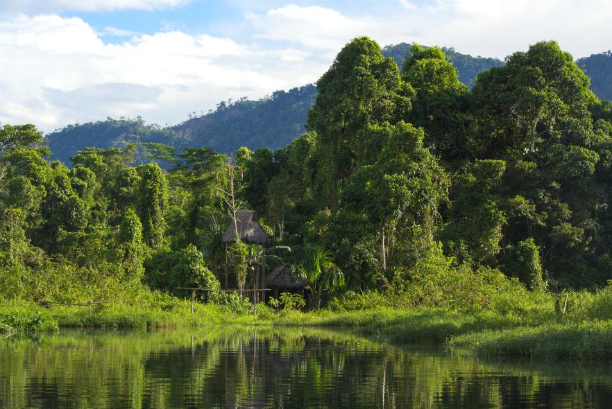 World Environment Day - Make Holidays Greener