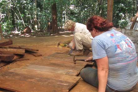 Making pig beds