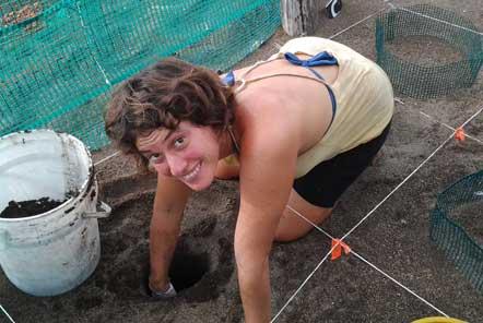 Digging a nest
