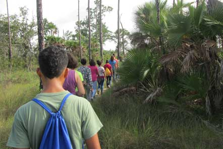 Conservation group walk