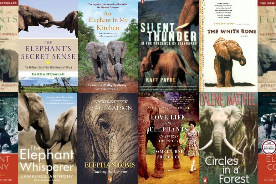 An elephant lover's reading list