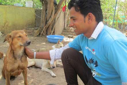 Raj, the volunteer coordinator at the Animal Rescue centre