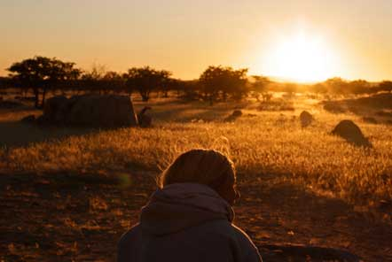 Desert Elephant Conservation Volunteering in Namibia
