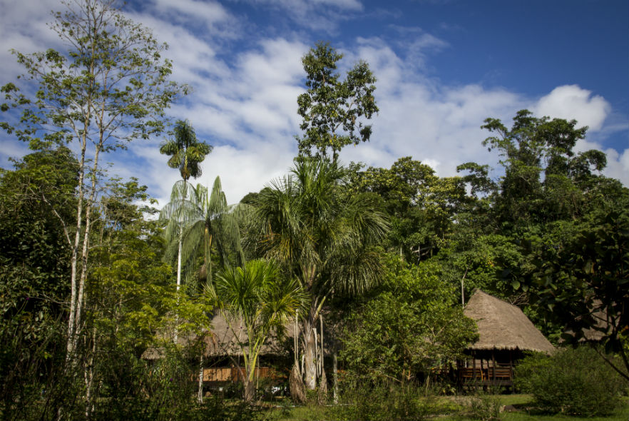 Volunteer and Intern accommodation at the research base in the jungle