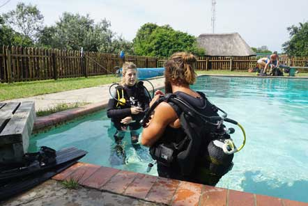 Scuba diving training in pool
