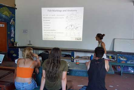 Scuba diving marine conservation lecture