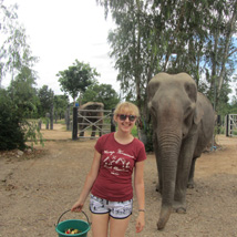 Sophie's Under 18 Elephant Care and Wildlife Rescue trip guest blog
