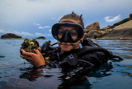 A day in life of a Marine Conservation volunteer