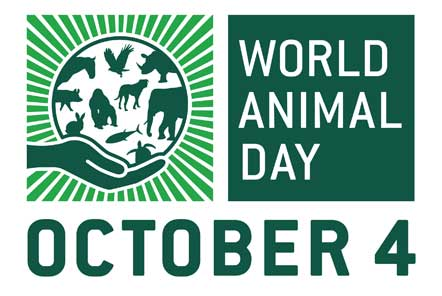 Celebrating World Animal Day 2018