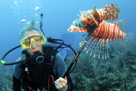 Guest Blog: An introduction to lionfish in Belize