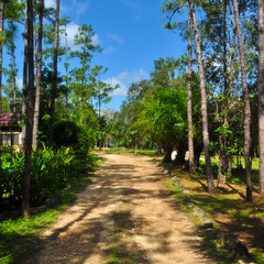 Belize local road and countryside