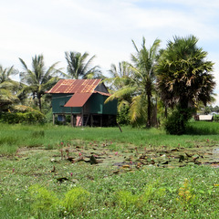 Cambodia rural building