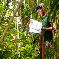 Conservation volunteering research in amazon