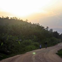 Ghana dirt road