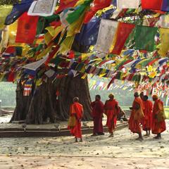 Nepal buddhist monks