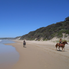 South Africa horse riding on beach